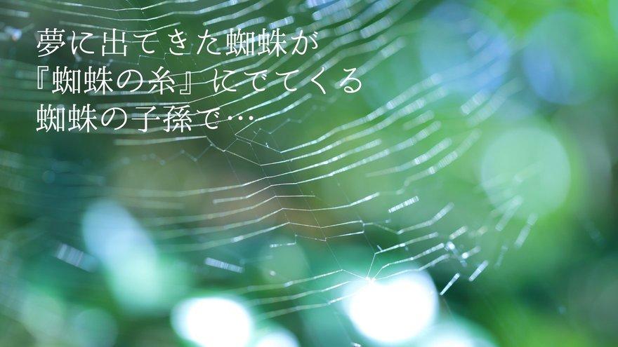 夢 蜘蛛 の 【夢占い】蜘蛛の夢の意味と心理46個!宝くじや妊娠が関係?